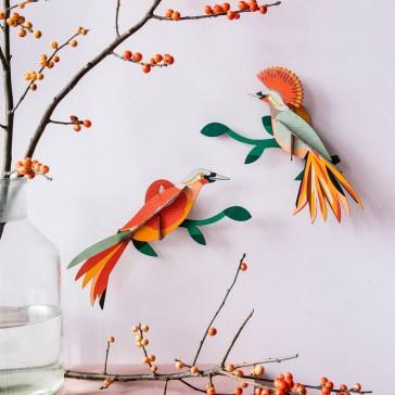 Duo d'oiseaux du paradis sur leurs branches par studio ROOF