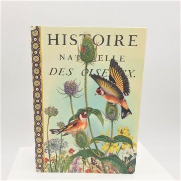 """Cahier imagier """"Histoire naturelle des oiseaux"""" par Gwenaëlle Trolez"""