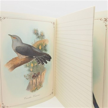 Intérieur du cahier avec pages lignées et illustrations par Gwenaëlle Trolez