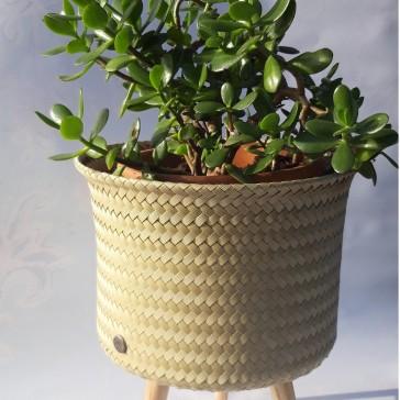 Cache-pot pour plante par Handed by, couleur camel