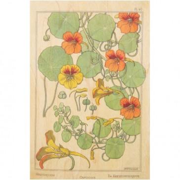 """Carte postale en bois d'érable """"Fleurs Capucine"""" par Woodhi"""
