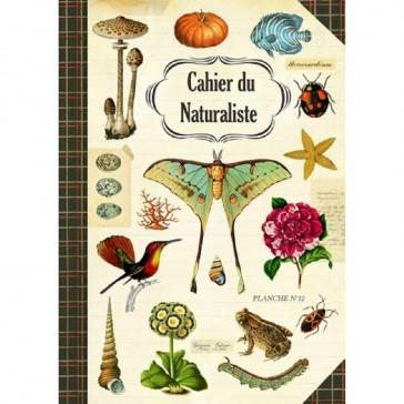 """Carnet imagier """"Cahier du Naturaliste"""" par Gwenaëlle Trolez"""